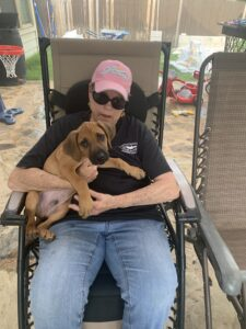 charlie ridgeback as a puppy
