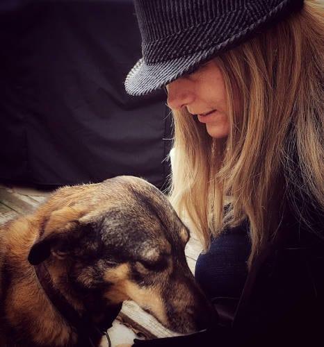 Rhodesian Ridgeback Puppies for Sale in Grand Praire